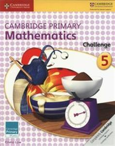 Picture of Cambridge Primary Mathematics Challenge 5