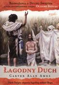 polish book : Łagodny Du... - Alan Ames Carver