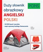 Duży słown... -  foreign books in polish