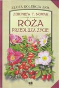 Róża przed... - Zbigniew T. Nowak -  books from Poland