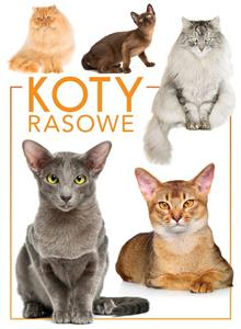 Picture of Koty rasowe