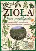 Zioła Nowa... - Mancini Paola, Polettini Barbara -  foreign books in polish
