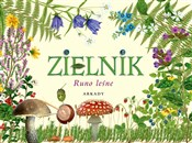 Zielnik Ru... - Henryk Garbarczyk -  foreign books in polish