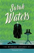 polish book : Muskając a... - Sarah Waters