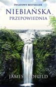 Niebiańska... - James Redfield -  foreign books in polish