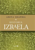polish book : Historia I... - Anita Shapira