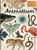 Animalium - Jenny Broom -  books from Poland