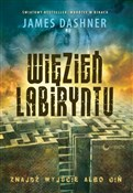 Więzień La... - James Dashner -  books in polish
